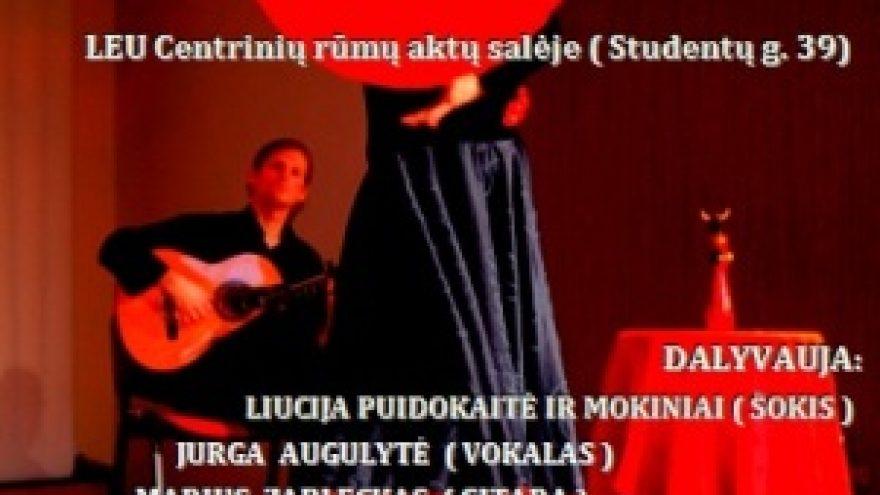 Flamenco vakaras