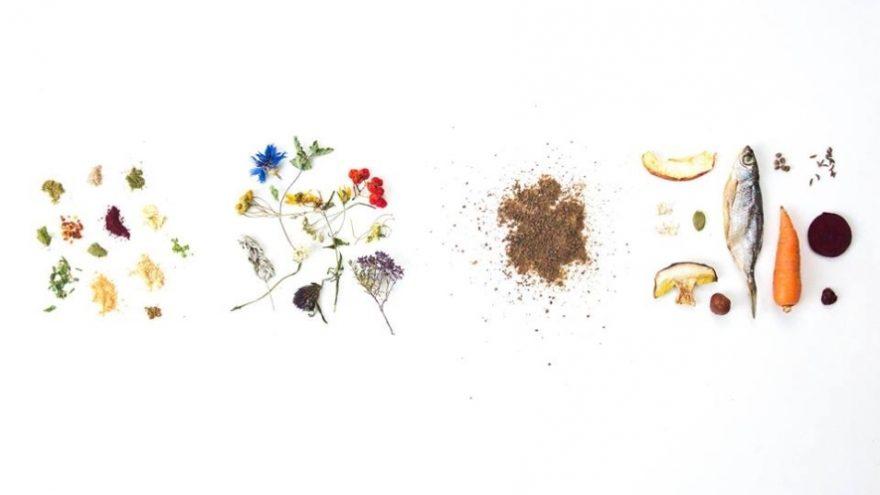 Lietuviškų švenčių ritualai: maisto potyrių dizainas