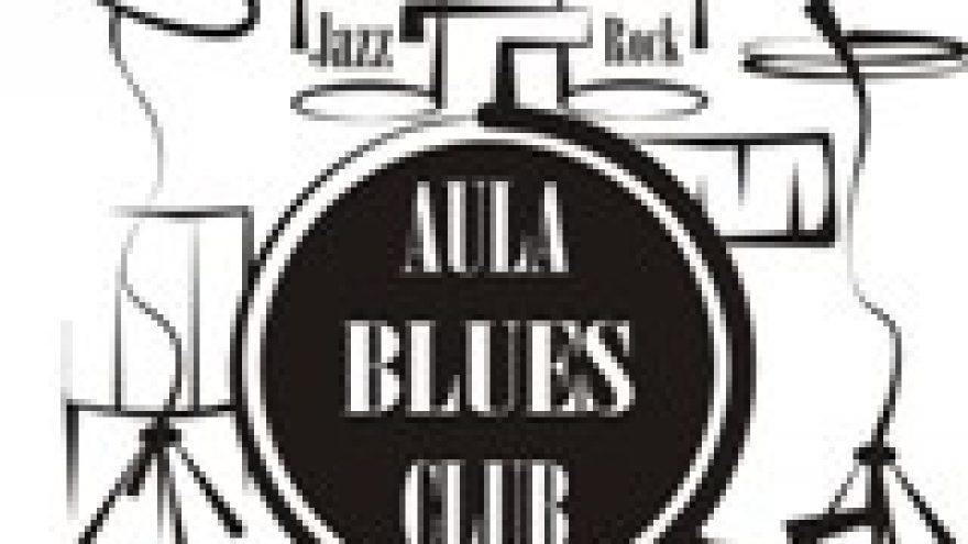 """Belkin&Jutas Acoustic Blues Duo"""