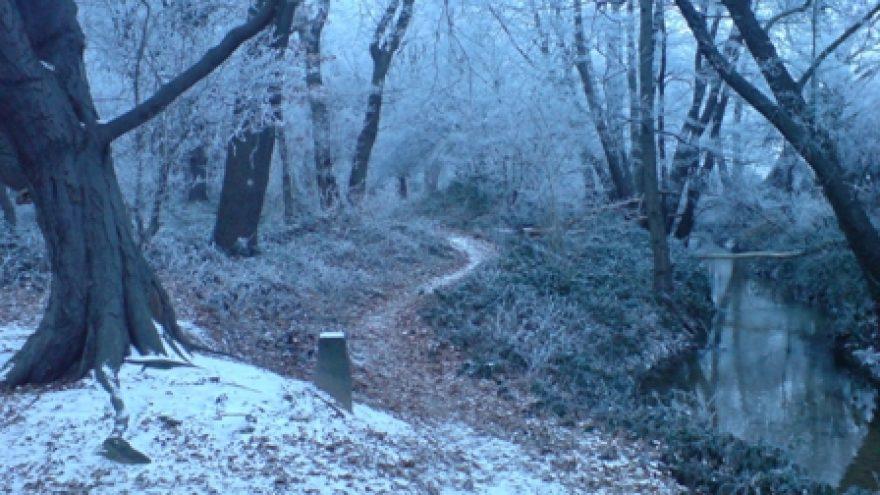 Pėsčiomis Stakliškių apylinkėmis