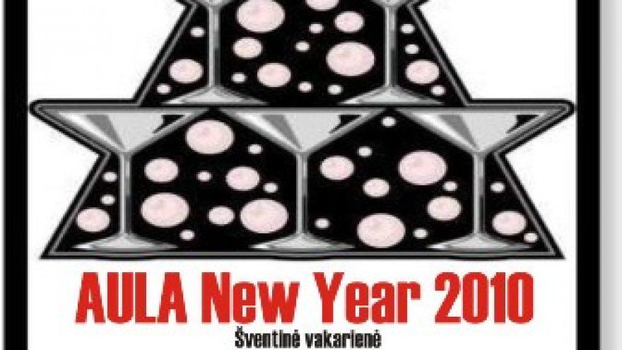 Naujųjų metų sutikimas AULOJE