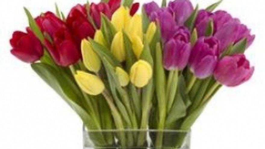 Ar sugalvojai kaip nustebinsi savo mylimąją kovo 8-ąją?