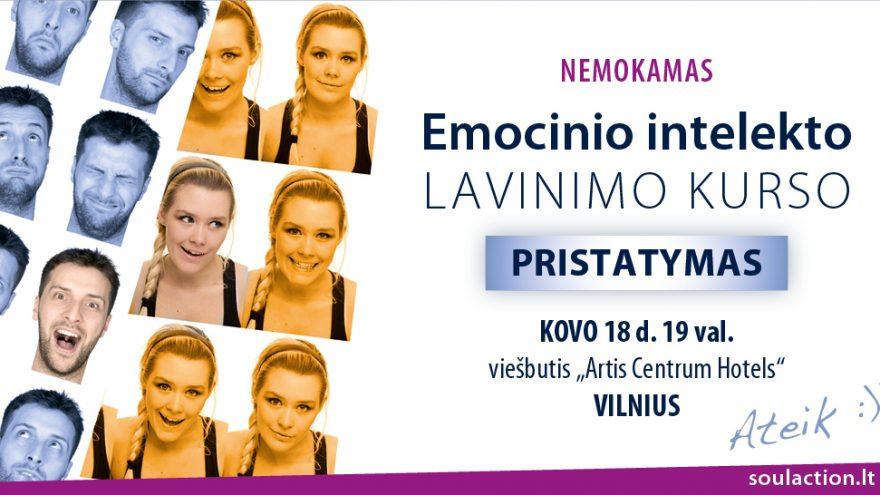 Emocinio intelekto lavinimo kursas Vilniuje