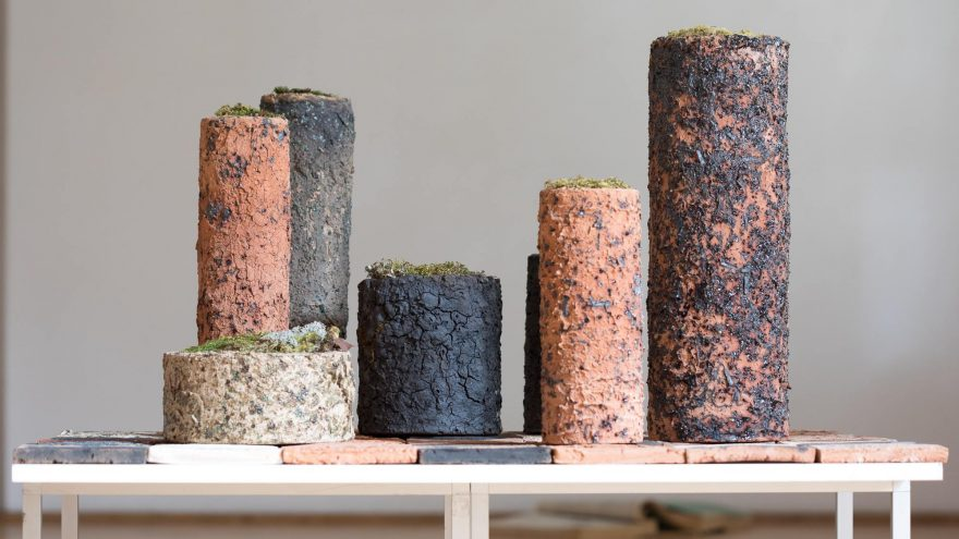 """M. Mikelėnaitės keramikos paroda """"Entropija"""""""