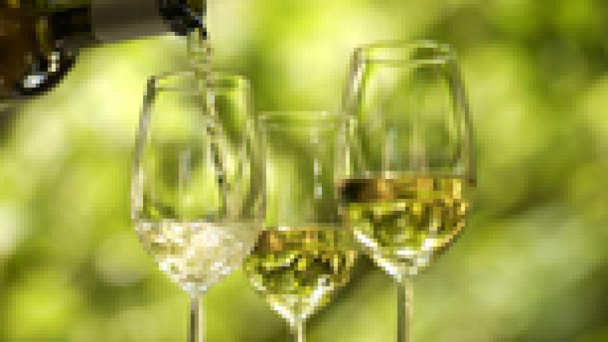 Pažintinė Austrijos ir Vokietijos baltojo vyno degustacija