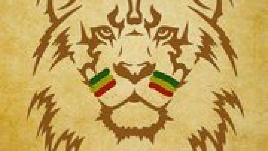 Lion Army – Cr-Edit B-day