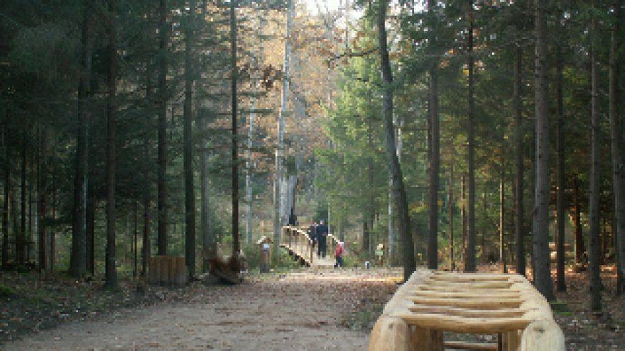 Pėsčiomis po Vingio parką ir Karoliniškių draustinį