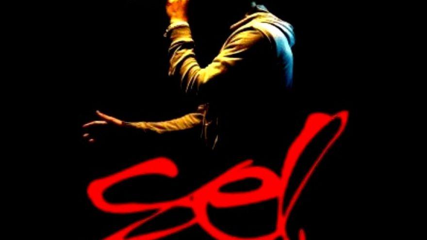 Vakaras skirtas SEL (E.Dragūno) dainų albumams