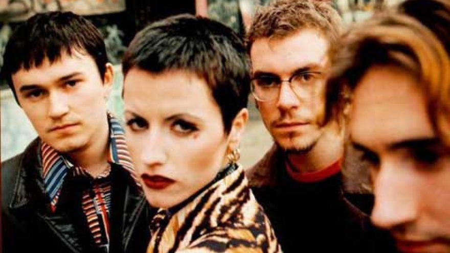 CRANBERRIES PROJEKTAS