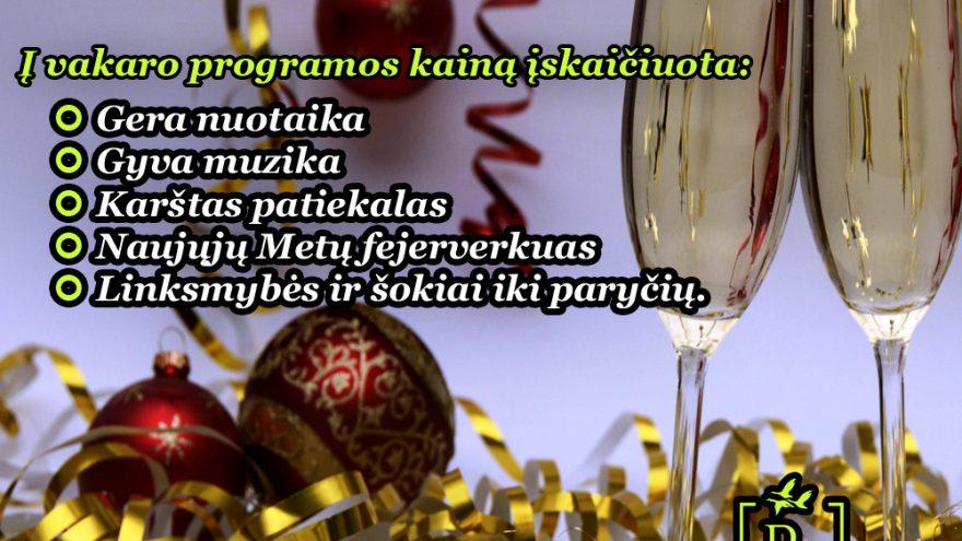 Naujųjų metų sutikimas Rimuošės Dvare