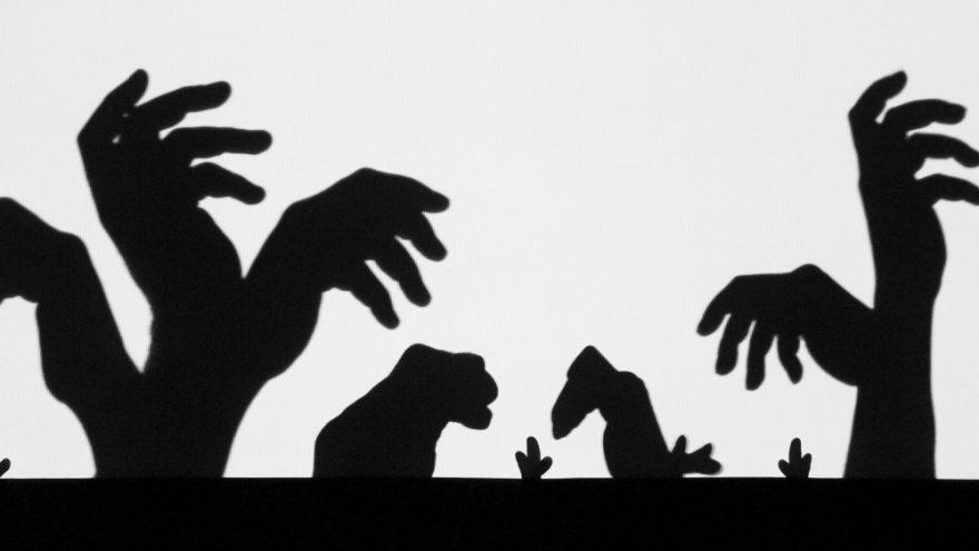 Gruzijos rankų šešėlių teatro spektaklis vaikams