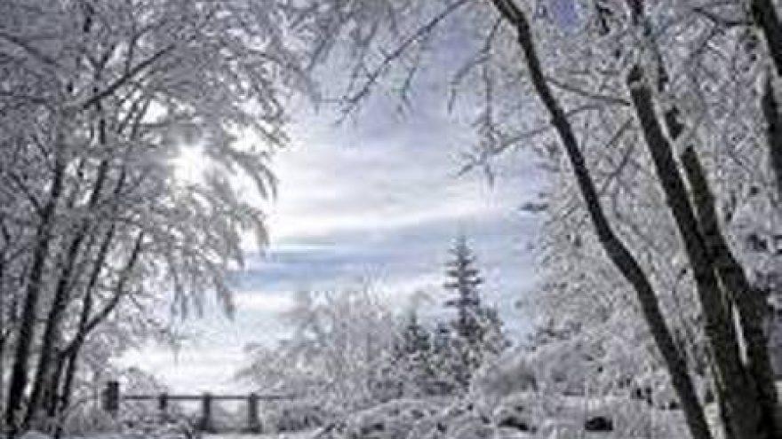 Snieguotais takeliais po Pavilnių regioninį parką