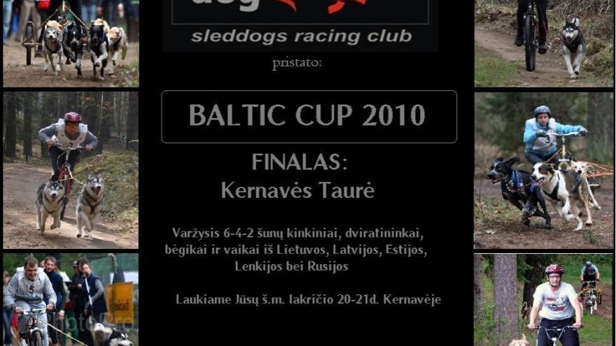 Baltic Cup 2010