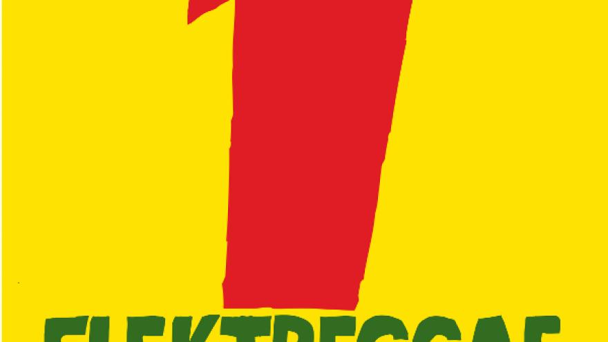 ELEKTREGGAE