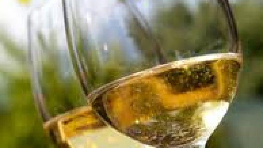 Sauvignon Blanc vyno iš skirtingų regionų degustavimas