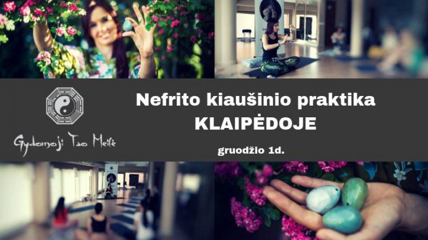 Nefrito kiaušinio praktika Klaipėdoje