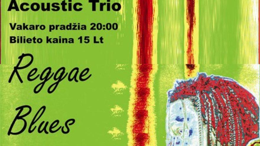 King Lion JAM/USA Acoustic Trio