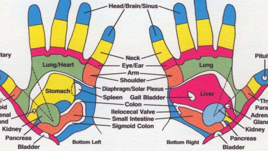 """Kūno mankšta ir paskaita """"Plaštakų refleksologija"""""""