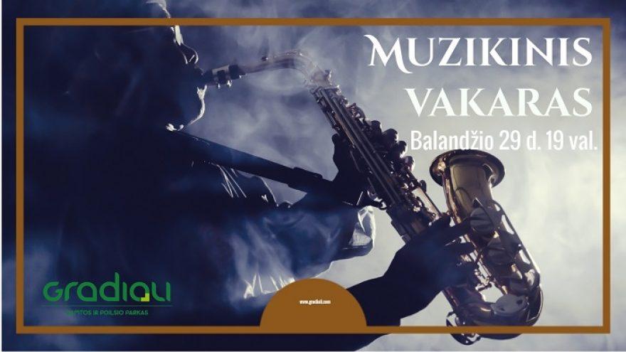 Muzikinis vakaras