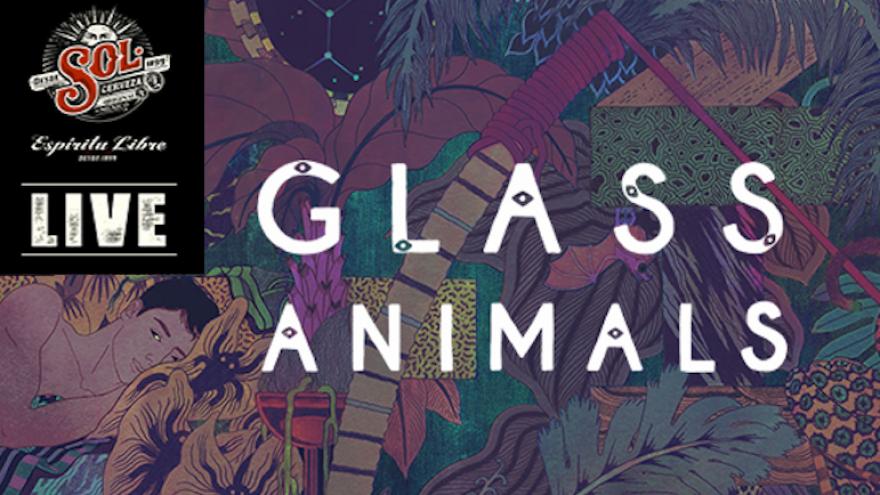 SOL LIVE: Glass Animals (UK)
