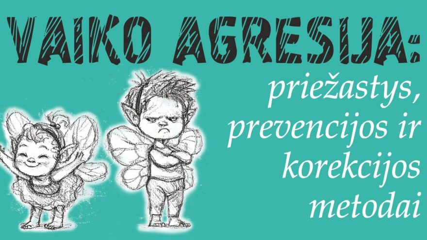 Vaiko agresija: priežastys, prevencijos ir korekcijos metodai
