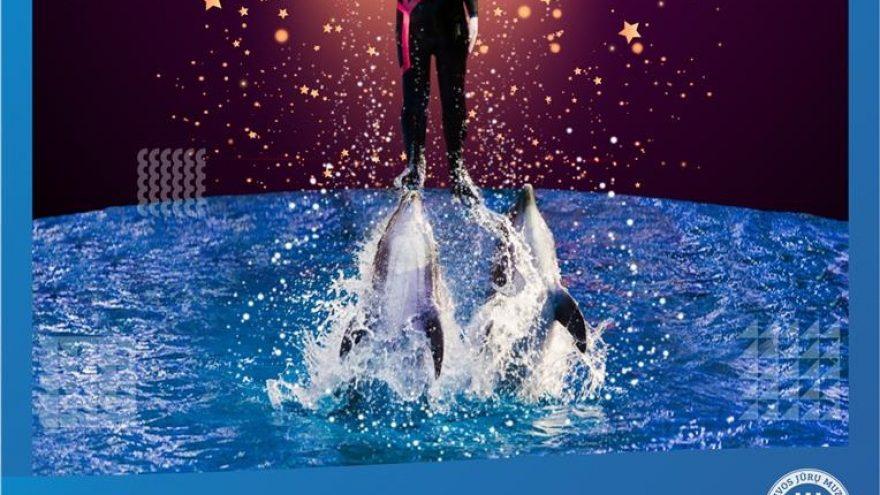 """""""Delfinai ir Žvaigždės"""""""