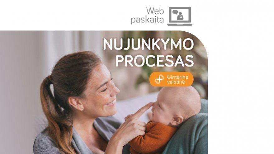 """LIVE: Web Seminaras """"Nujunkymo procesas"""""""