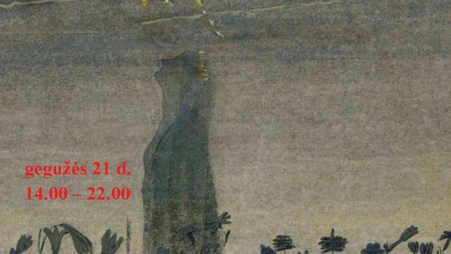 Muziejų naktis Druskininkuose