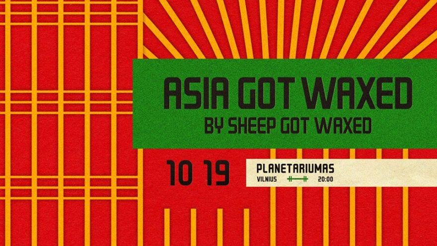 ASIA GOT WAXED by Sheep Got Waxed