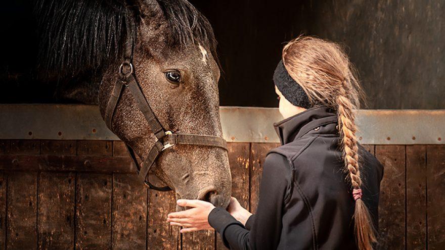 Edukacinė programa vaikams žirgyne