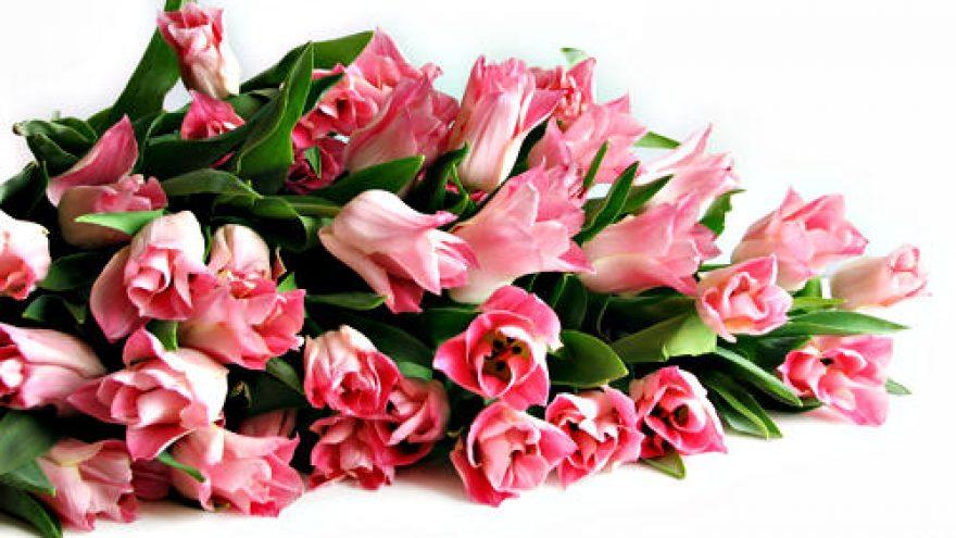 2012-03-08 Ketvirtadienis – Kovo 8 moters diena