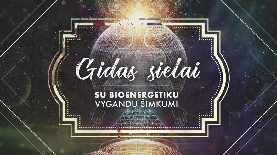 Gidas sielai: Bioenergetika, gydymas, intuicija. Su bioenergetiku Vygandu Šimkumi