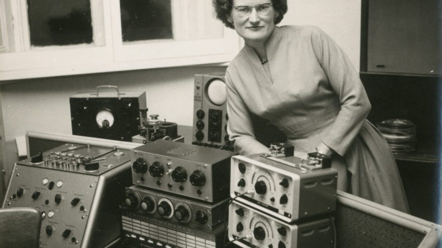Arlekinas / VDFF: Tranzistorių seserys